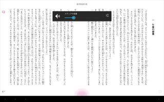 Screenshot_2013-04-27-13-21-35_R.jpg